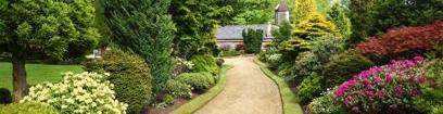 Botanical-Garden-Horizontal-408.2