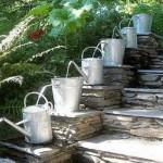 El Dorado County Master Gardeners