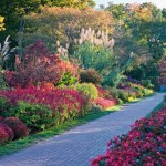 Longwood Gardens Autumn Color