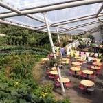 Restaurant and Garden