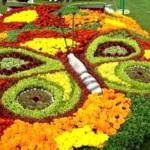 Sacramento County Master Gardeners