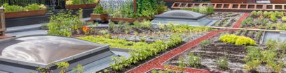 Sustainability-Garden-Horizontal-408